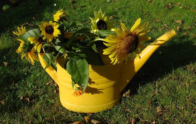 Természetes tápoldat növényeknek